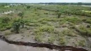 Mancha de petroleo en el río Magdalena - Video