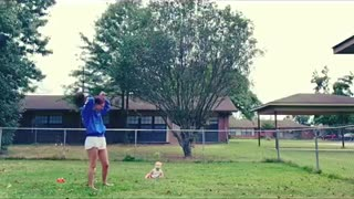 Baby laughs at dog playing with a stick - Video