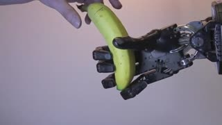 Robotic hand 'sees and feels' for gripping dexterity - Video