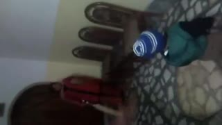 Children are Playing Cricket at Home  - Video
