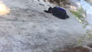 Guy on small blue sled falls off and hits head  - Video