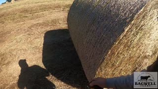 Just Another Day Baling