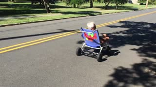 Senior citizen flies off beach chair hoverboard  - Video