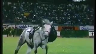 Robin Hasta Luego, Galloping Master! - Video