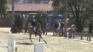 This Horse Took His Own Course - Video