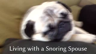 Living with a Snoring Spouse  - Video