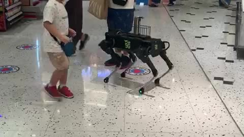 Robotic doggy serves shoppers with hand sanitizer
