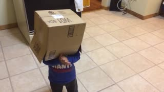 Kid Hilariously Runs Into Oven With Box Over His Head - Video