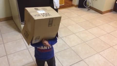 Kid Hilariously Runs Into Oven With Box Over His Head