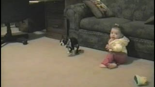 Baby Takes Her First Steps… Straight Into Doggy Doo Doo - Video