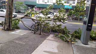New York City Storm Damage