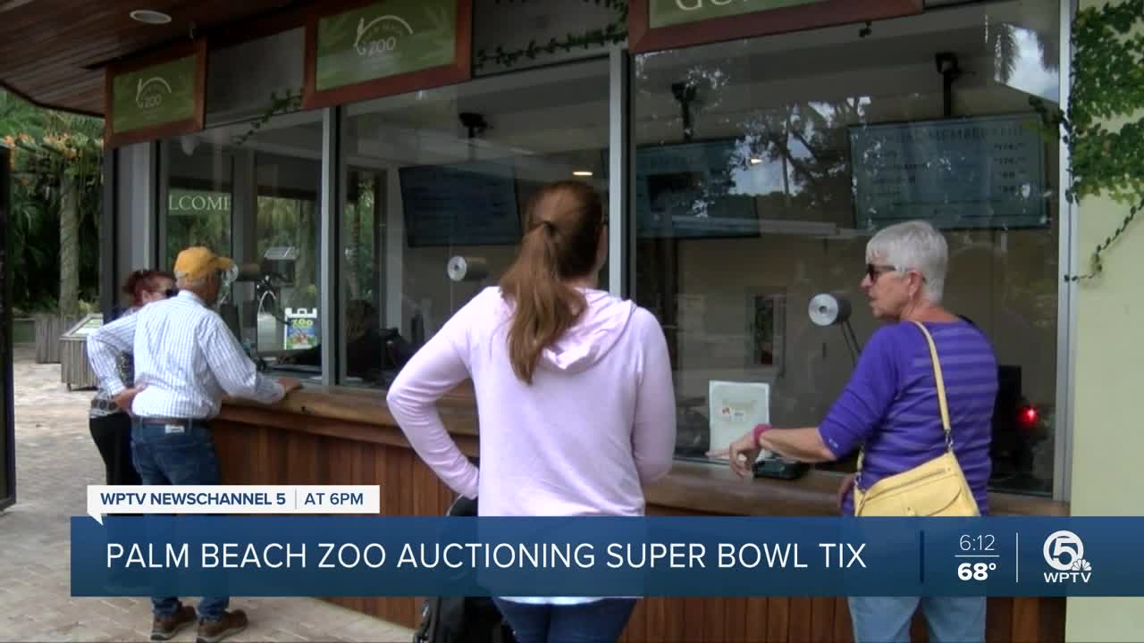 Palm Beach Zoo accepting bids for two Super Bowl tickets