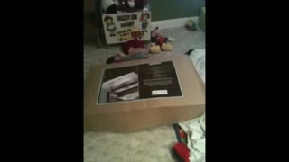 Toddler's Stunt Goes Wrong When Cardboard Box Attacks Him - Video