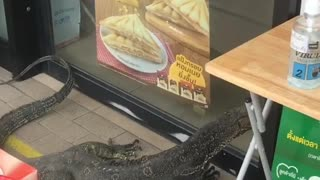 Huge Lizard Tries to Enter Convenience Store