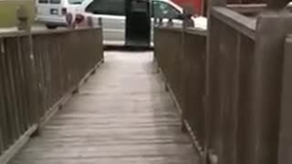 An Exciting Way to Use a Wheelchair Ramp! - Video