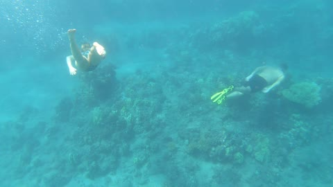 Free Diving in Lanai Hawaii with AnnaKate