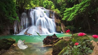 Relaxing Waterfall Sounds For Sleep, Relaxation, Nature Sounds