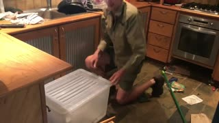 Big Lace Monitor Lizard in the Oven - Video