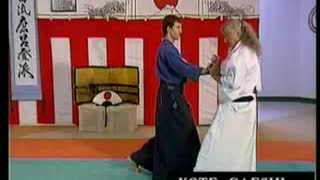 Takeda Ryu AikiGoshindo (Aikijutsu) DVD Trailer - Video