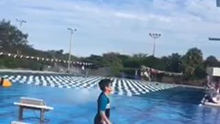Guy black white shorts diving board belly flop