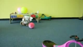 Collab copyright protection - little girl chases yellow balloon - Video