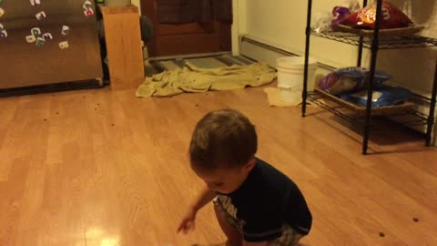 Great Dane knows how to make toddlers laugh