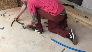 Rescuing a King Snake From Duct Tape