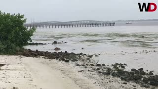Charlotte Harbor Beach Loses Ocean TOO - Video