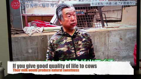 Sweet Japanese Farmer Handling Cows with Names Will Melt Your Heart