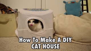 How to make a DIY cat home - Video