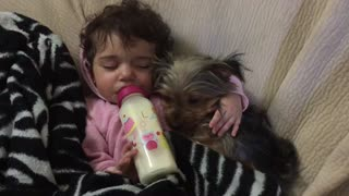 Cuteness overload! Baby cuddles puppy for nap time - Video