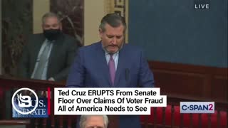 Ted Cruz ERUPTS on Senate Floor over Voter Fraud