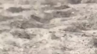 Guy walks on the beach in the sand with white socks on  - Video