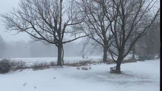 Winter Weather Snow Storm Relaxing Outside Nature Natural Video 4K (01-25-2021)