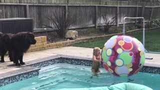 Dog Insists On Rescuing Little Girl Who Swims Carelessly In Pool - Video
