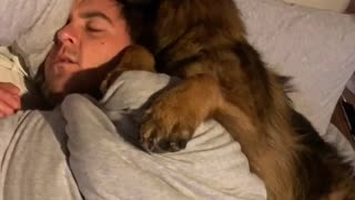 Dog Cuddles Dad