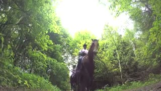 (VIDEO) Epic Horse Galloping Recorded On Tape! - Video