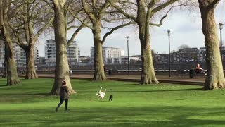 Chair Chases Dog Through Park - Video