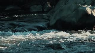 The World Valley New Zealand  - Video