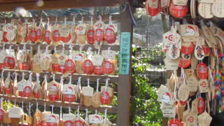 Japanese wishing plaques at a Temple in Kyoto - Video