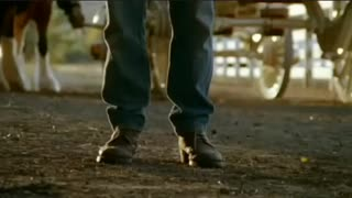 Horse Fetches A Stick – Super Bowl Ad 2009 - Video