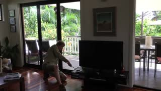 Six-Foot Carpet Python Under TV
