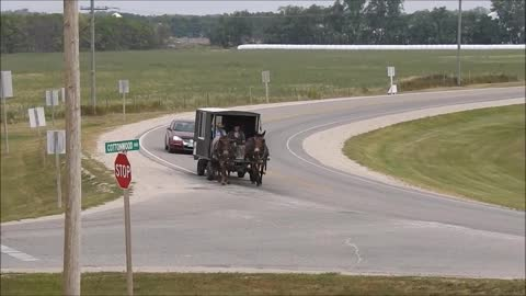 Horse Buggy Carriage Strolling Down The Highway