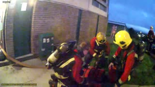 Quick-Thinking Firefighters Rescue Unconscious Puppy Trapped In Burning Building - Video
