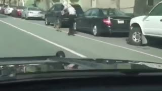 Dog Powered Skateboard Pulled Along Street