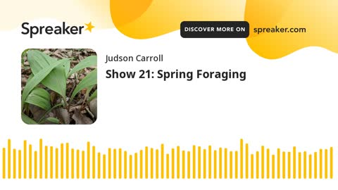 Show 21: Spring Foraging (part 1 of 3)