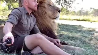 watch this lion with his daddy