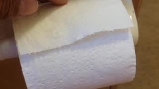 how toilet paper has to be