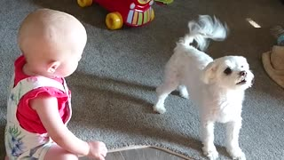 Cute Puppy and Adorable Baby Have Amazing Conversation Speaking The Same Language - Video