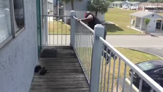 Guy puts on ironman mask and jumps off balcony and fails falls - Video